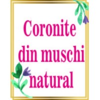 Coronite cu muschi natural